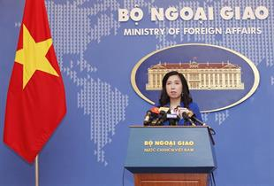 Việt Nam to work with Czech Republic to address visa-related issue: Foreign ministry spokesperson